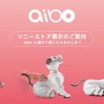 ソニー、全国のソニーストアにて「aibo」の店頭抽選販売を実施へ